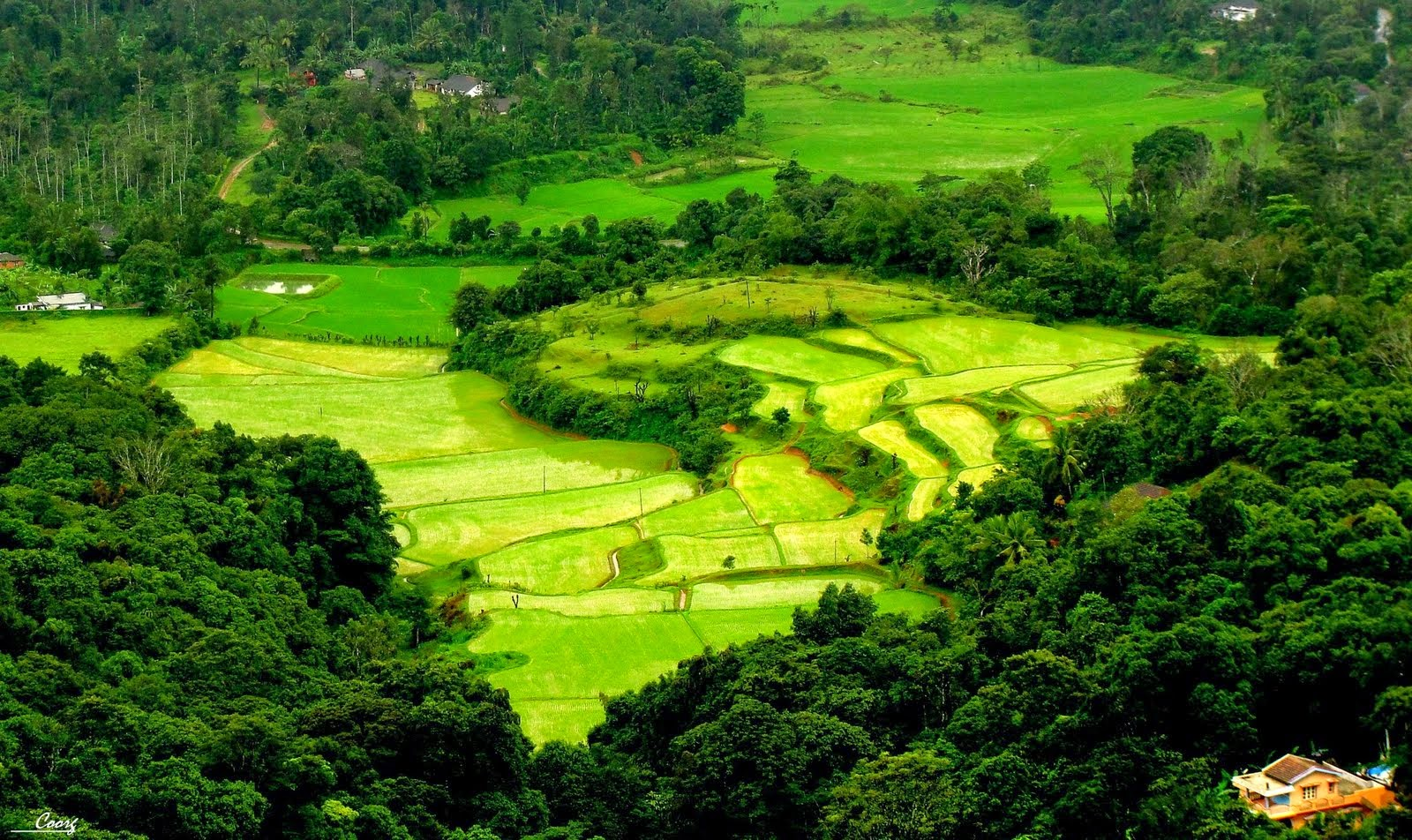 Coorg -Weekend Getaways from Bangalore