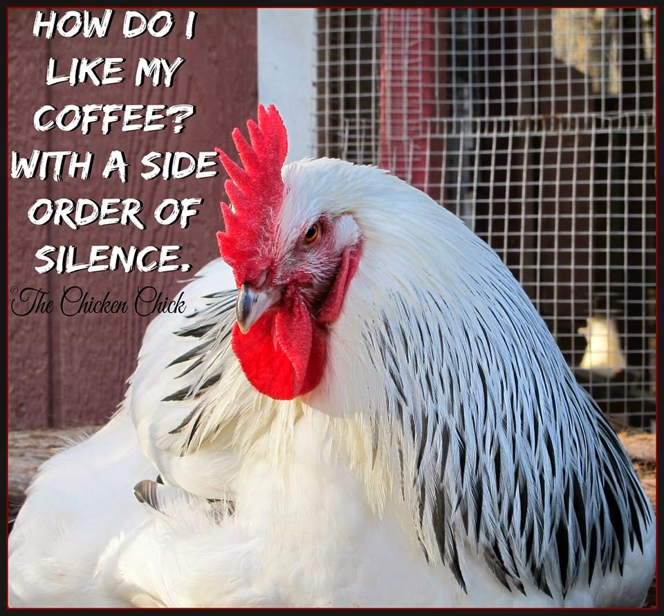 How do I like my coffee? With a side order of silence.