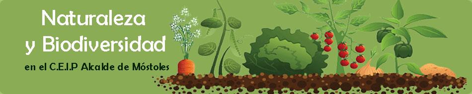 Naturaleza y Biodiversidad en el CEIP Alcalde de Móstoles
