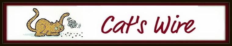 Cat's Draht