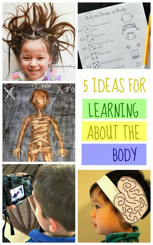 preschool science activities- 5 ideas for learning about the body