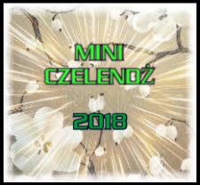 Mini Czelendż 2018