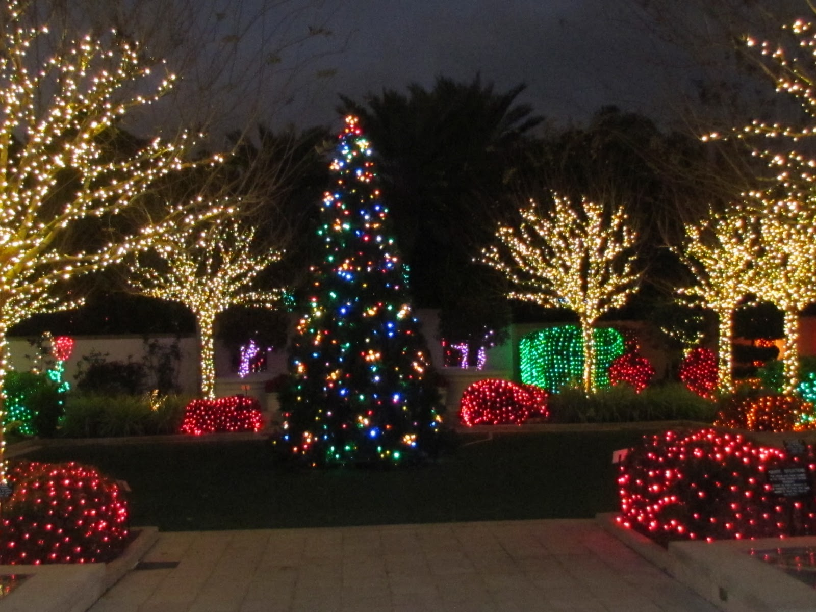 A little peace in our heaven holiday lights at florida - Largo botanical gardens christmas lights ...