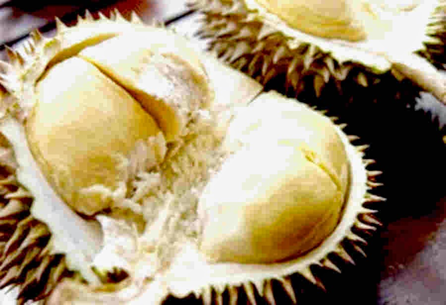 8 Manfaat Buah Durian