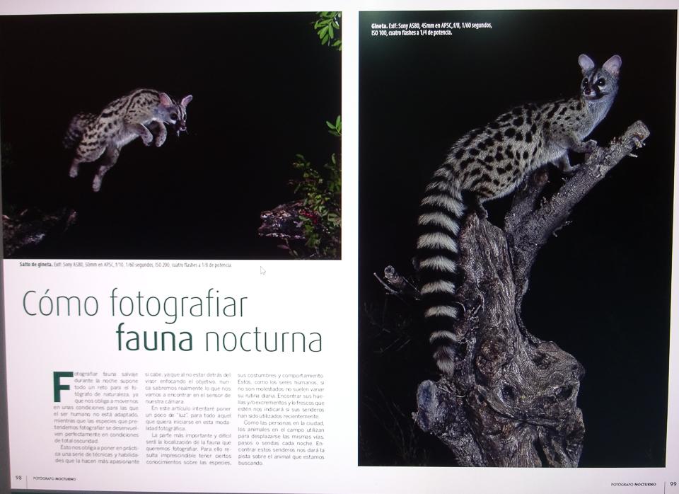 Revista: EL Fotógrafo Nocturno