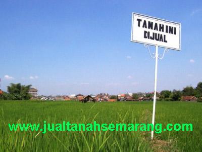 Situs Jual Beli Tanah Di Semarang