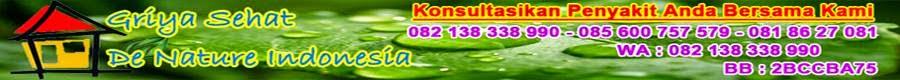 Herbal Penyembuh sipilis
