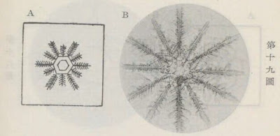 『雪華図説』の研究 模写図と顕微鏡写真と比較 第十九図