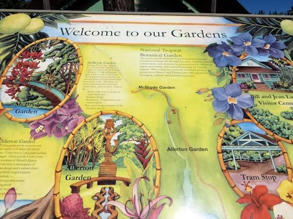 A GUIDE TO NORTHEASTERN GARDENING Allerton McBryde Botanical