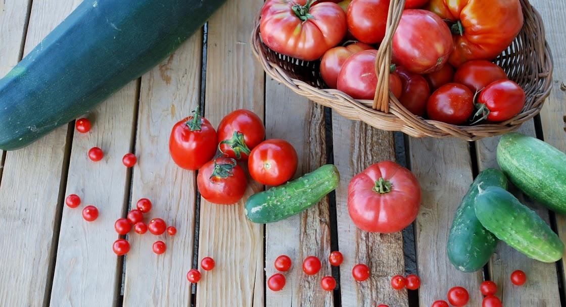 Magiczna kuchnia - przepisy kuchni tradycyjnej i wegetariańskiej