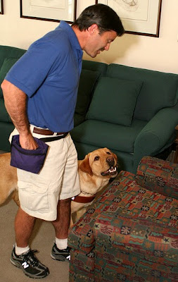 Instructor Todd Jurek uses food reward to teach a yellow Lab to find an empty chair