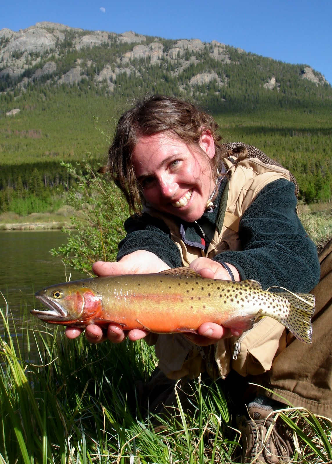 Eat more brook trout 20 questions jay zimmerman for Colorado fish stocking
