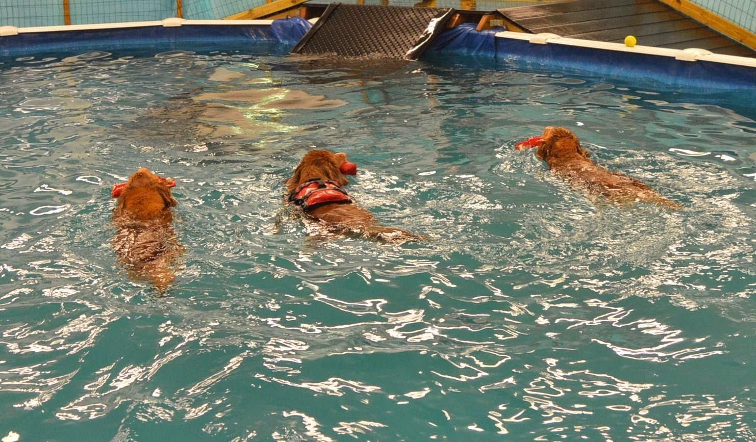 Tytöt uimalassa