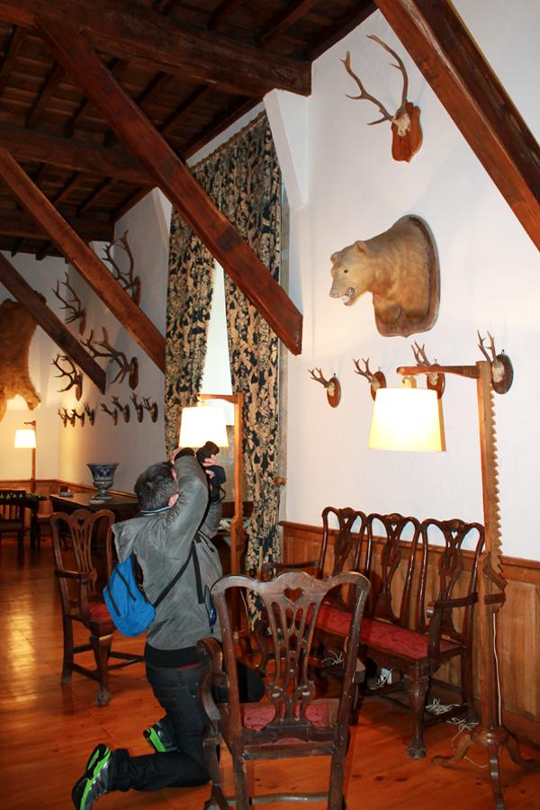 Visitando el pazo de oca trucosviajeros blog de viajes for Trofeos caza decoracion