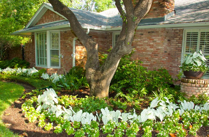 Landscape Design By Alpenfieber Landscape Design Dallas