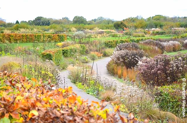 Gardens for all seasons rhs wisley the galloping gardener the glasshouse borders at rhs wisley in late october workwithnaturefo