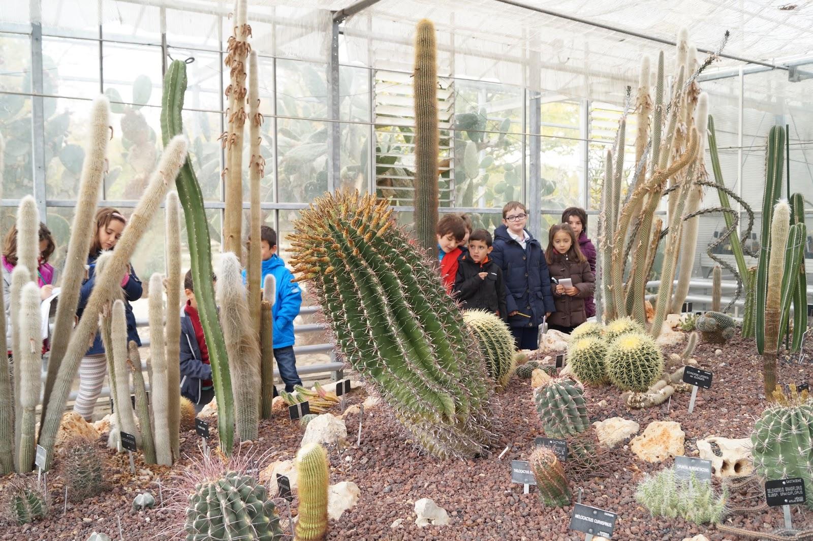 Peri dico digital del ceip pablo neruda excursi n al for Ceip jardin botanico