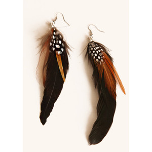 Feather Earrings collection
