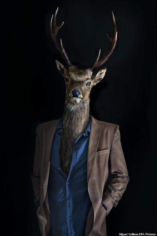 animales que visten ropa