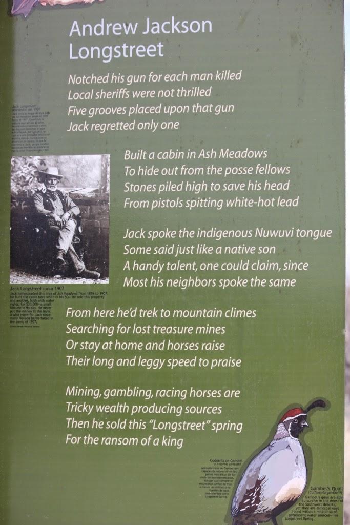 Andrew Jackson Longstreet poem
