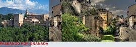 Paseando por Granada