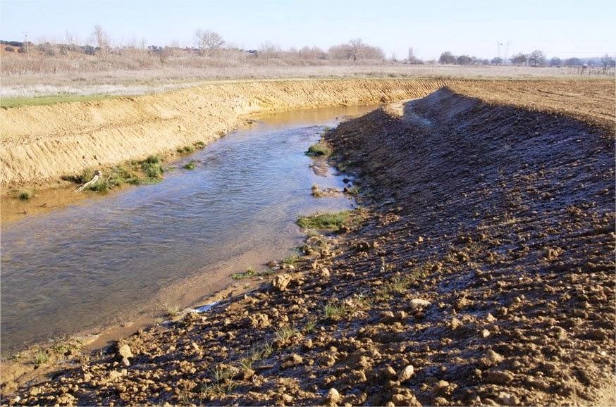 Restauración de conexión lateral del río Sequillo.