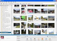 picasa foto manager