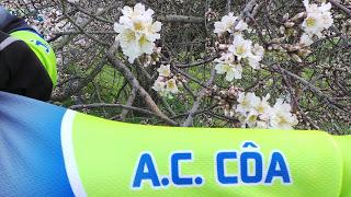 Passeio de Cicloturismo das Amendoeiras em Flor