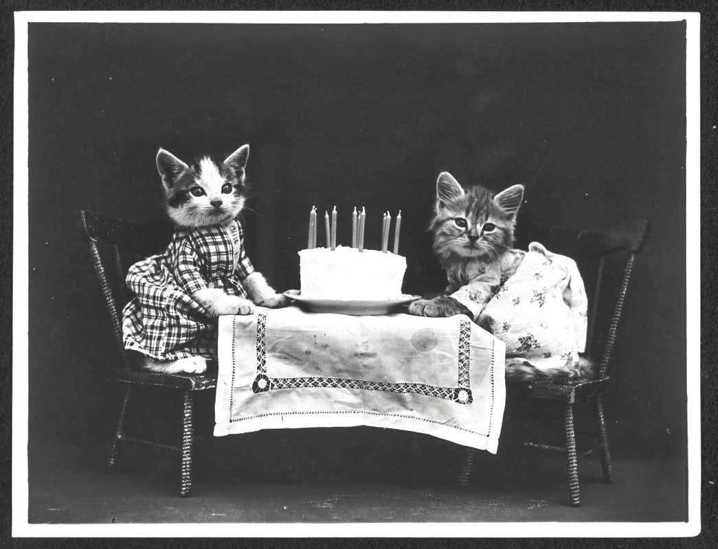 Birthday Black And White Photography