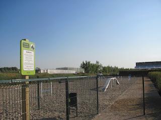 Perros Sueltos en Zaragoza
