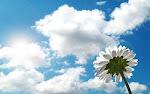 "Quem acende uma luz é o primeiro a beneficiar-se da claridade."  (Gilbert Keith Chesterton)