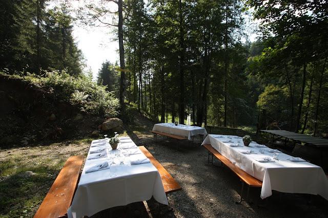 Wald-Picknick am Riessersee