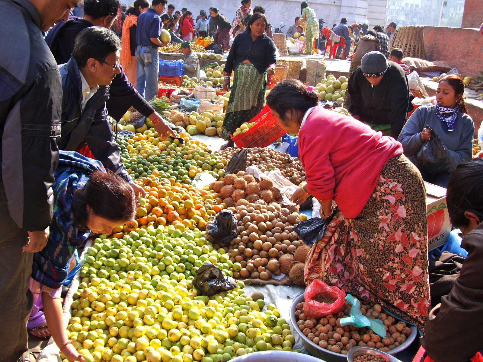 commodity market in nepal Online commodity trading, commodity exchange, commodity market: mex nepal global rank from mercantile exchange nepal limited mexnepal.