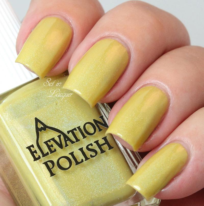 Elevation Polish - Golden Leaves