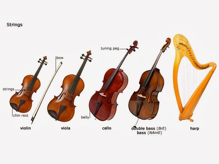 Life] Music Instrument Storage--- Violin ,Viola,Cello (violoncello ...