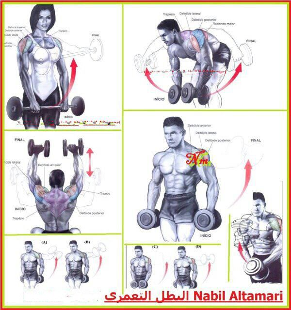 Fitness Workouts amp Exercises  Your Workoutbox