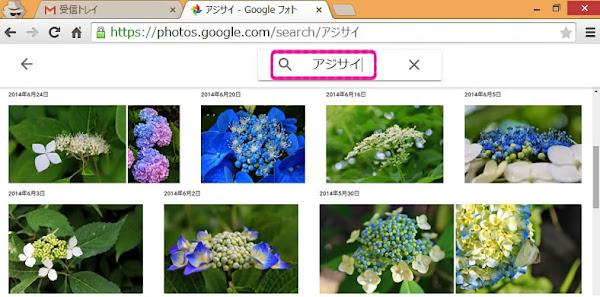 Googleフォトで紫陽花を検索