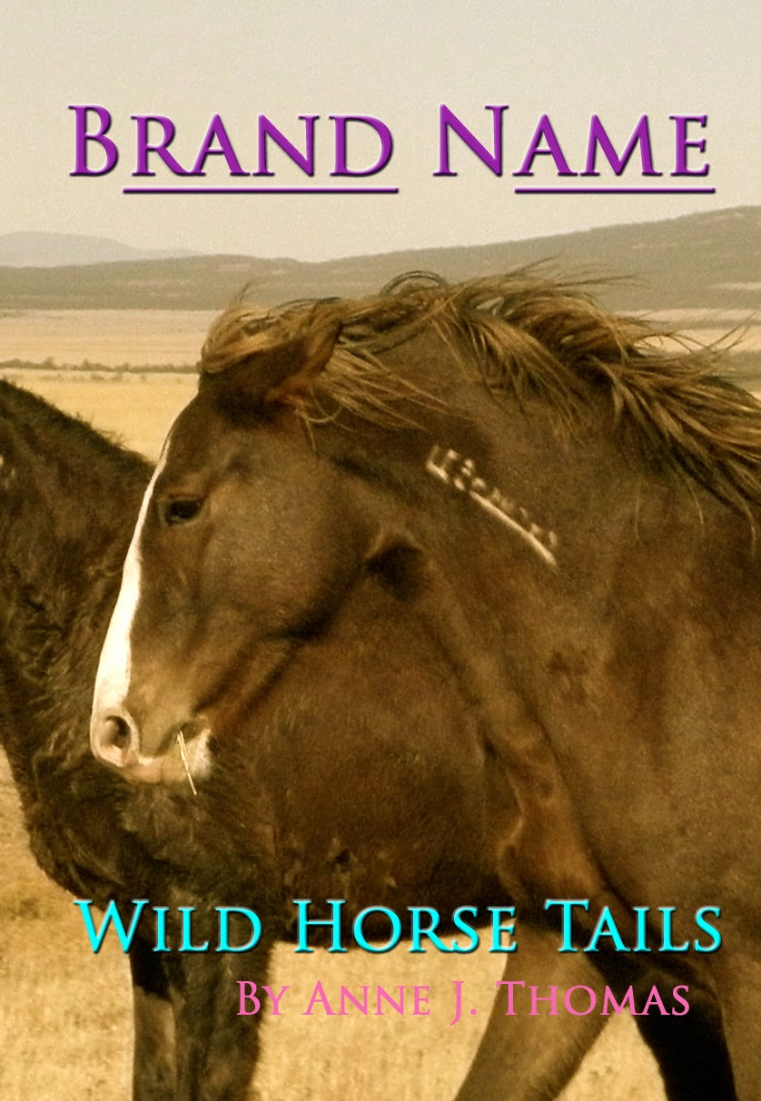 Brand Name ~ Wild Horse Tails