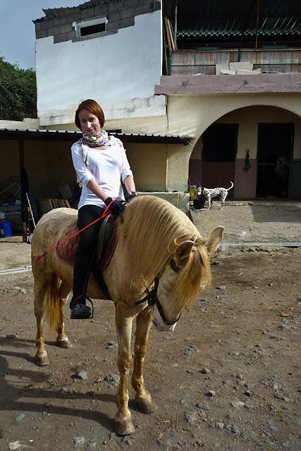 Tenerife - La Orotava horse riding