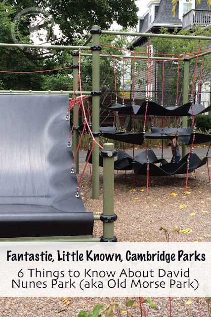Fantastic, Little Known, Cambridge Parks - 6 Things to Know About David Nunes Park (aka Old Morse Park)