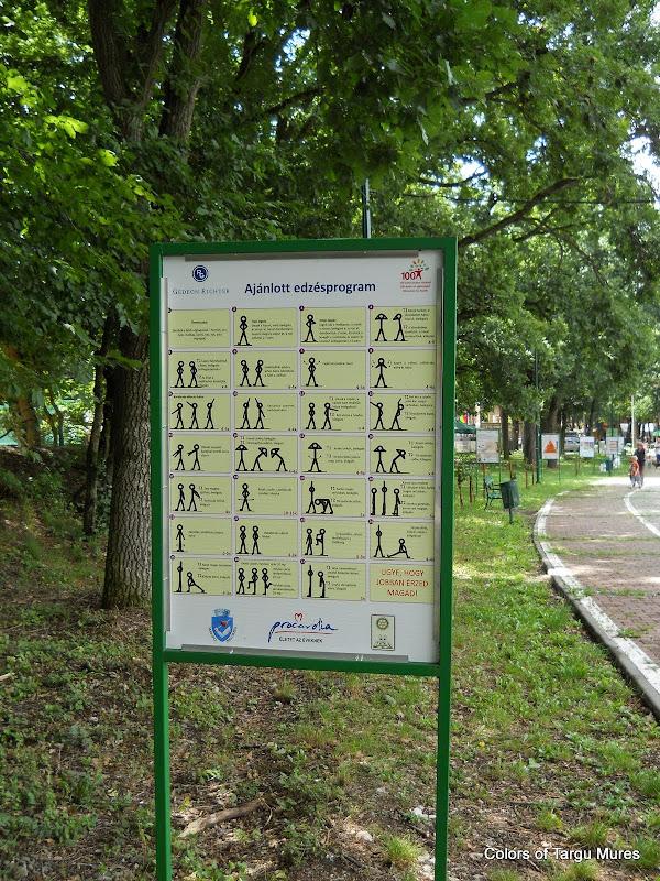 Panouri cu exemple de exercitii fizice la Platoul Cornesti, Targu Mures.