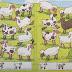 Внимание. Посчитать разных овечек и баранчиков