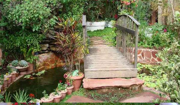 Decoração De Jardim Pequeno Externo Pictures