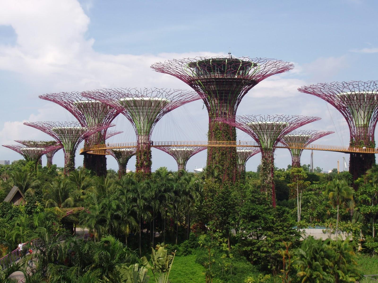Garden By The Bay Award betel, banyan, basil & bamboo: singapore's gardenthe bay