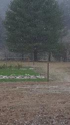 Early January Snow