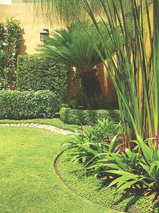 Revista Crear Ambientes: Jardines
