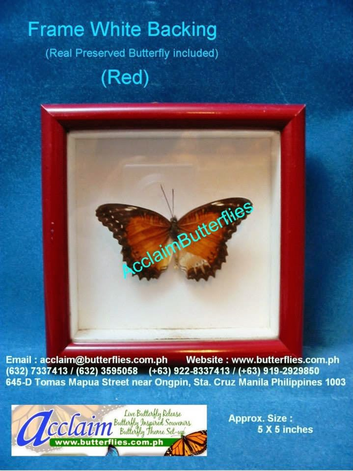 Acclaim Butterflies: Country Frame Butterflies