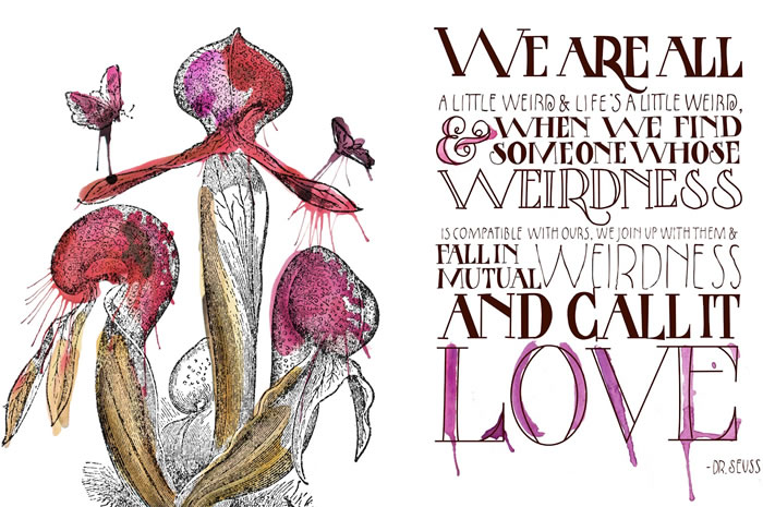 Dr Seuss Love Quote New Glamour Drops  A Quest For The Glamorous Details In Life  And