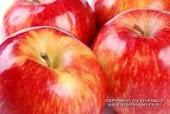 El Vinagre de Manzana en la Biblia porque tiene larga historia.