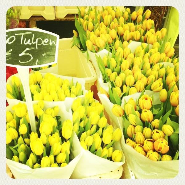 tulipanes calles de Amsterdam